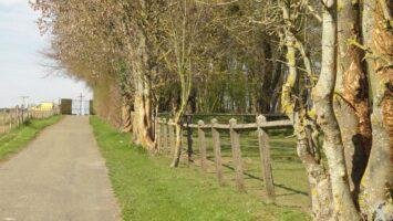 Chemin longeant l'église vers le cimetière - Contributeur : Natty