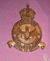 Ecusson du Squadron 214