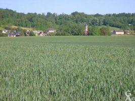Le village - Contributeur : C. et A. Rousselle
