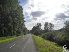 Route de Marizelle à Manicamp - Contributeur : S Sartori