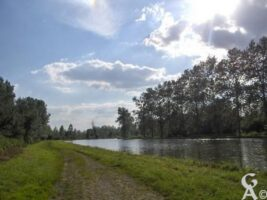 Le canal ( vers Quierzy ) - Contributeur : S Sartori