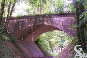 Pont en sous-bois. - Contributeur : Sébastien Sartori