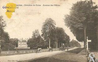 Domaine de Guise - Avenue des Hêtres - Contributeur : Michel Bouyenval