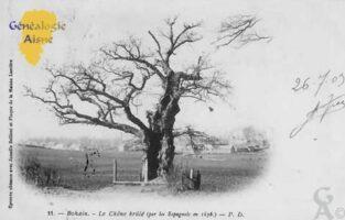 Le chêne brulé - Contributeur : Colette Brille