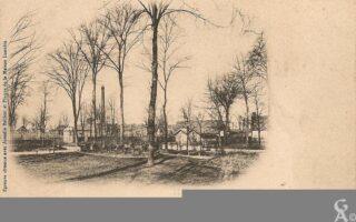 Bois des berceaux - Contributeur : R.Hourdry