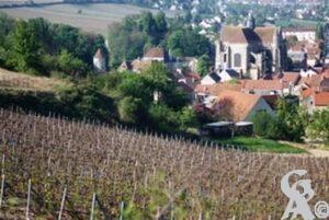 La commune est située sur la rive droite de la Marne à 2 km au sud-ouest (en aval) de Château-Thierry.Photo : Sébastien sartori