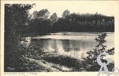 Le passé - L'étang