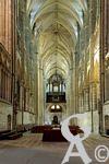 La Basilique - La nef